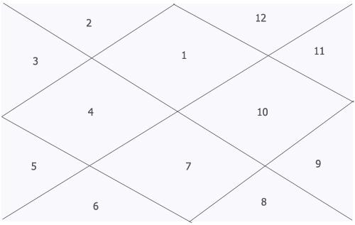 astrology basic chart