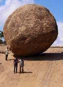 Krishna's butterball
